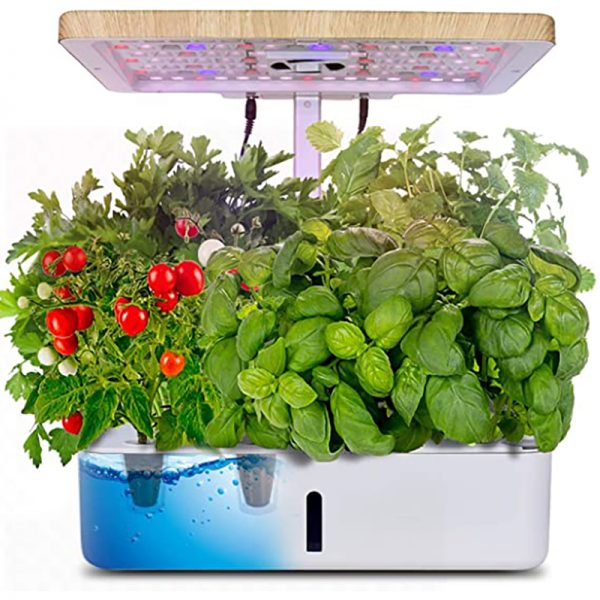2021 Hydroponic Growing System